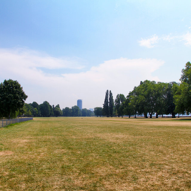 View over the deserted Rheinpark.