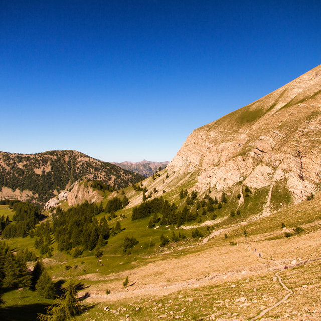 View along the hiking track to Mont Pelat.